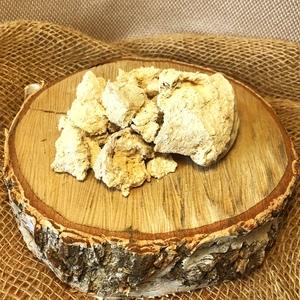 Агарикус (гриб лиственницы)